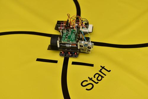 Pi-Bot robot