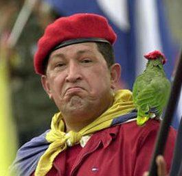 Chavez with a parrot, yesterday