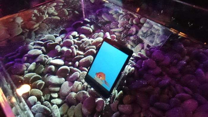 The Xperia Z3 Compact working fine under water