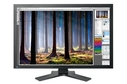 Eizo ColorEdge CG303W