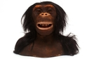 WowWee Alive! Chimpanzee