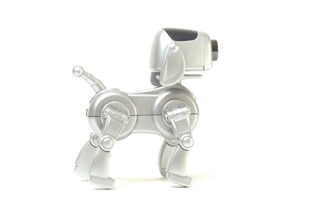 Anyware Corporation RoboDog Webcam