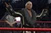 THQ WWE Smackdown Vs. Raw 2008