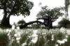Microsoft Game Studios Kingdom Under Fire: Circle Of Doom