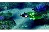 Nintendo Australia Endless Ocean