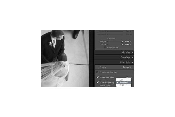 Adobe Systems Photoshop Lightroom 2.0