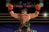Nintendo Australia Punch-Out!!