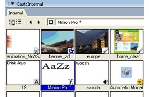 Adobe Systems Director 11.5