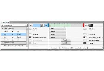 Adobe Systems Flash Catalyst beta