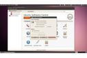 Ubuntu 10.04 LTS Lucid Lynx
